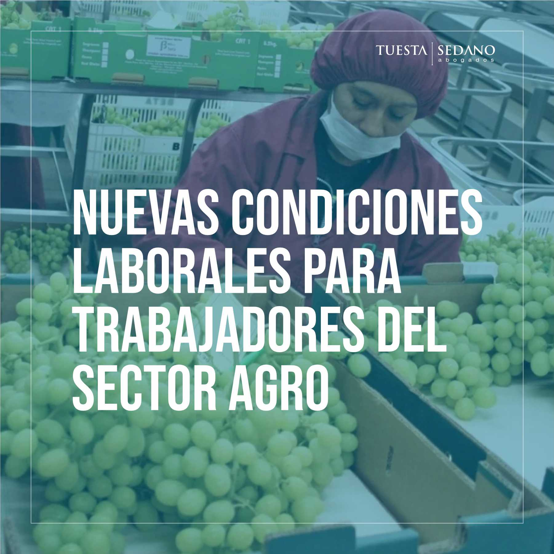 CONDICIONES AGRO-INSTA