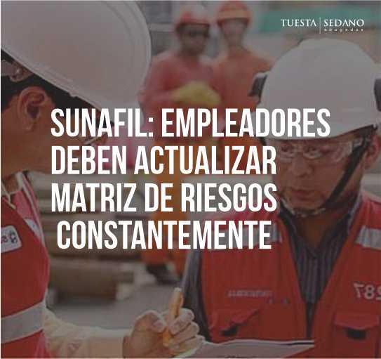 SUNAFIL MATRIZ DE RIESGOS-WEB011