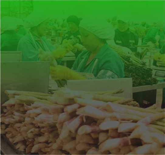 Aspectos relevantes del reglamento de la nueva Ley Agraria N° 31110