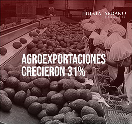 AGROEXPORTACIONES-CRECIERON-EN-31%AGROEXPORTACIONES-CRECIERON-EN-31%