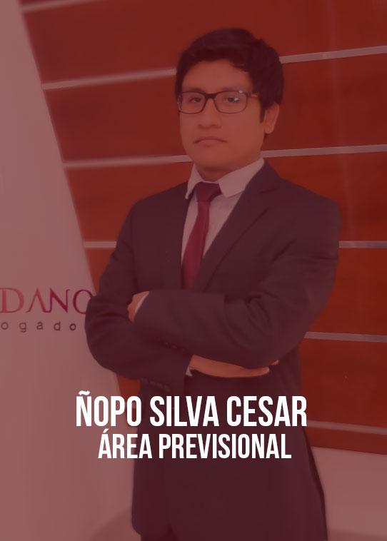 NOPO-SILVA