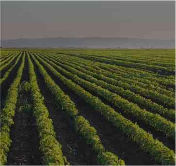 Boletín Tuslegal: El Proyecto de Ley Agraria aprobado en el Congreso